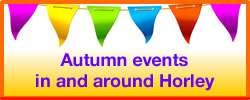Events in and around Horley