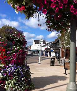 Summer flowers in Horley Town Centre