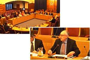 Reigate and Banstead Council webcast