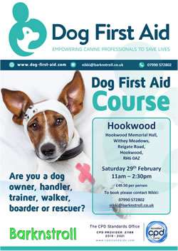 Dog First Aid, Hookwood, Surrey