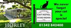 The Five Star Cat Hotel, Boarding Cattery, Horley